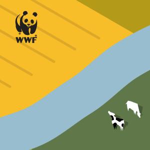 Zusammen mit dem WWF Deutschland bewegen wir die EU-Parlamentarier zu einem starken Votum.